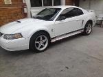 Foto Mustang deportivo 01