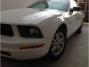Foto 2008 Ford Mustang Premium 2DR RWD Coupe