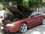 Foto Mustang Impecable Ideal Para Lucirlo 1997
