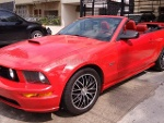 Foto Ford Mustang 2008 0