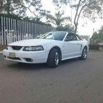 Foto 1999 Ford Mustang Shelby cobra en Venta
