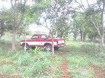 Foto Ford Otro Modelo Otra 1979