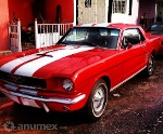 Foto Ford mustang 1966