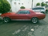 Foto Mustang hardtop