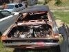 Foto Mustang -68