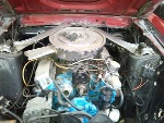 Foto Mustang GT 351 -70