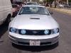 Foto Mustang VIP para exigentes -07