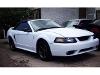 Foto Mustang cobra