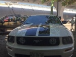 Foto Ford Mustang 2005 157716
