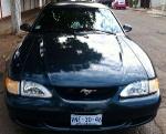 Foto Mustang 95