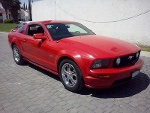 Foto Ford Mustang GT Coupé 2005