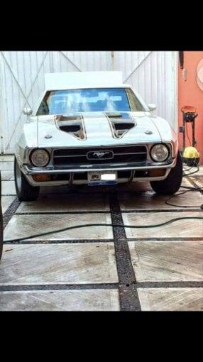 Foto Mustang 71