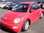 Foto Beetle rojo