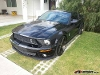 Foto Ford Mustang 2009 2p Shelby Coupe