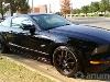 Foto Mustang gt rodado shelby cobra 2005