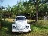 Foto Precioso Volkswagen Sedan.
