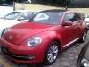 Foto Magnifico beetle sport