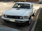 Foto Mustang HT Detallado 69