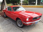 Foto Ford Mustang 1965 17881