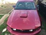 Foto Ford mustang premium 8 cil - gt