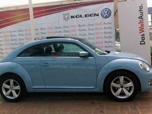 Foto Volkswagen Beetle 2015 1606