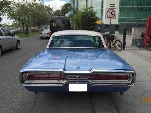 Foto Ford Thunderbird 1966 62764