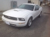 Foto Ford Mustang Cupé 2009