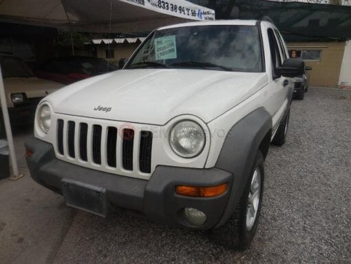 Foto Jeep Liberty 2002 173109