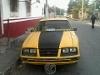 Foto Mustang burbuja -84