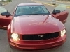 Foto Potente ford mustang -05