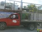 Foto Camion Chevrolet 3 toneladas Modelo Otra 1995