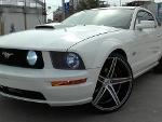 Foto Imponente Mustang GT VIP V8