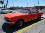 Foto Mustang 65