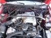 Foto Mustang 95 -