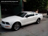 Foto Ford mustang 2005 - 05 ford mustang limpiecito...