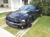 Foto Ford Mustang 2p Shelby coupe