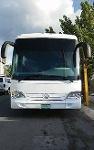 Foto Vendo autobús de turismo en excelentes condiciones
