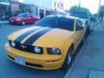 Foto Mustang GT 2005