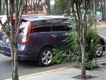 Foto Minivan Grandis Automatica Factura original P/C