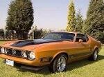 Foto Ford Mustang 1973 Motor 393w