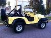 Foto Jeep Willys 4 x 4 1976
