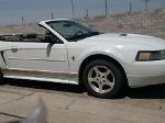 Foto Mustang