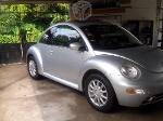 Foto Beetle en perfecto estado