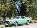 Foto Mustang Hard Top 1968