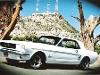 Foto Mustang 1966 Automatico V8 Motor 302, 2 Puertas