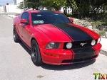 Foto Mustang 2