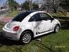 Foto Edicion 10 años Beetle -08