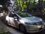 Foto Honda City 2010 80000