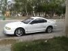 Foto Mustang En Excelentes Condiciones 1997
