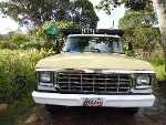 Foto Camion ford 350 año 1979